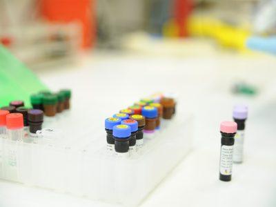 Immunothérapies, nouvelles classes thrérapeutiques : les axes de recherche en cours à l'IPC